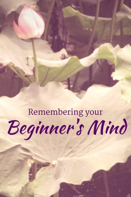 BeginnersMind